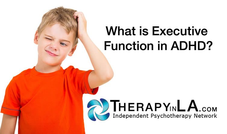 ADHD Function